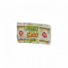 DELSEY T/TISS 5000 SHEETS*10S