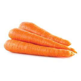 CARROTS TABLE 6/9 INCHES